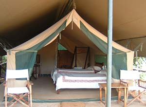 Governors Camp, Masai Mara