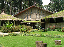Mountain Gorillas Nest - ideally located for trekking the gorillas