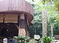 The Rainforest Lodge