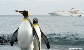Antarctic Peninsula Adventure