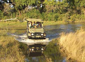 driving through the Okavango delta, Botswana