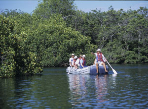 Panga ride in mangroves at Elizabeth Bay