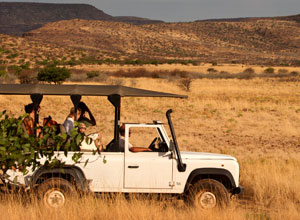 Game drive at Etendeka Mountain Camp