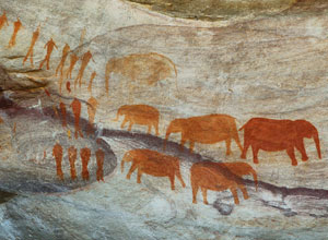 See San rock art near Bushmans Kloof