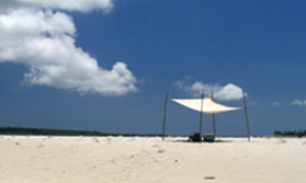 An Island Escape in Tanzania