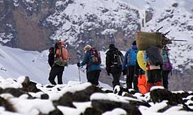 Summiting Mount Kilimanjaro
