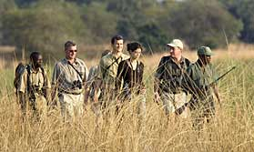 Robin Pope Safaris walking mobile