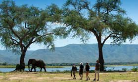 Best of Zimbabwe holiday