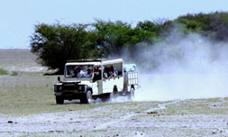 mobile-camping-safari-crossing-pan